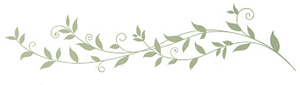 http://www.brightertomorrow.net/leavesdivider.jpg
